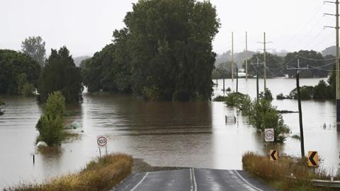 百年一遇的洪水,数十年最大鼠灾 澳大利亚遭遇双重打击