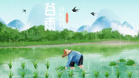 谷雨 | 谷雨三月中 牡丹香正浓