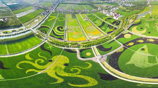 第二届乐动体育长兴岛工业生态旅游文化节启幕 今年玩法更多