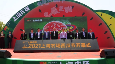 将黄海之滨的清甜送到市民果盘  2021上海农场西瓜节开幕