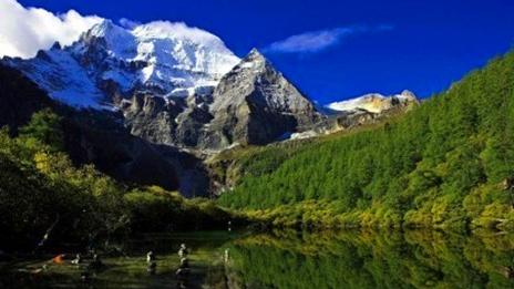 """西藏旅游市场日渐""""升温"""""""