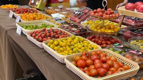 上海番茄竟栽种有158个品种!地产大小番茄金奖花落谁家?