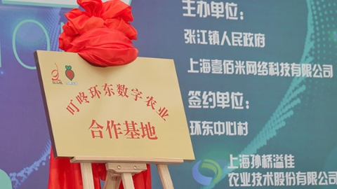 """让更多网红爆款复原""""小辰光的味道"""" 张江镇与""""叮咚买菜""""签署战略合作协议"""