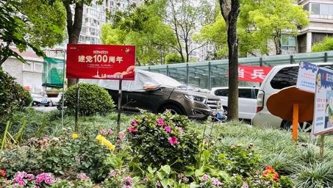 """晴天四处扬尘、雨天满地泥泞的现象消失了,桃浦镇这个居民区的垃圾分类点位变身""""小花园"""""""
