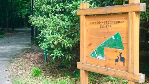 提升保护区、完善救助、禁野执法,松江野生动物保护工作取得阶段性成果