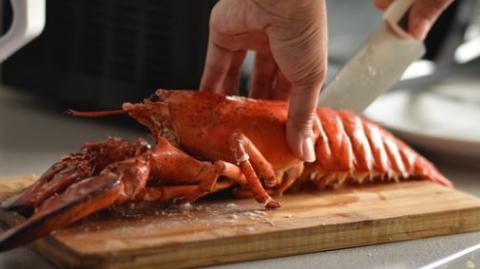 煮活螃蟹也违法?增加动物福利,这些国家正在这样做……