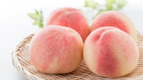 上市提前、品种多、口感佳,正宗的南汇水蜜桃上市了!南汇水蜜桃分拣中心同日启运