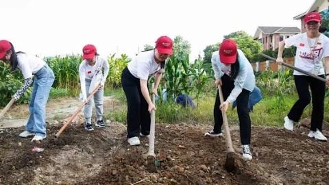 暑假百景|上海财大学子用双手干一场农活 用所学调研乡村产业振兴