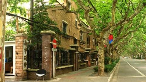 何菲:上海城西