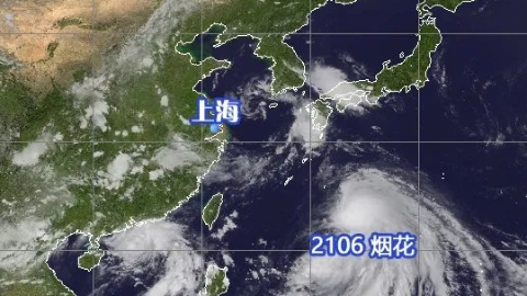 """新民快评   防汛防台打好""""软硬兼备""""组合拳"""