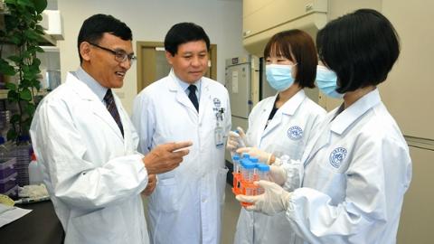 """仁济医院重磅成果登《自然》:靶向药物""""强强联手"""" 可有效抑制中晚期肝癌进展"""
