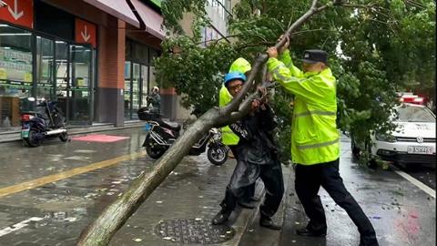 """快!杨浦赶在""""烟花""""前转移撤离7000余人 暖!外卖小哥帮民警推车搬树"""