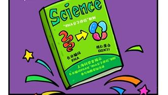 """乐动体育科学家揭示长非编码RNA以""""RNA分子伴侣""""机制参与细胞命运活动"""