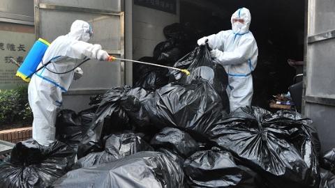"""增强内在""""免疫力"""" 上海秋季爱国卫生运动拉开帷幕"""