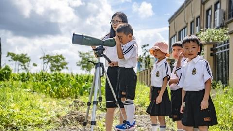 白鹭池鹭黑水鸡不用搬家了!松江区小学生用一封信留住了教室外的天然湿地