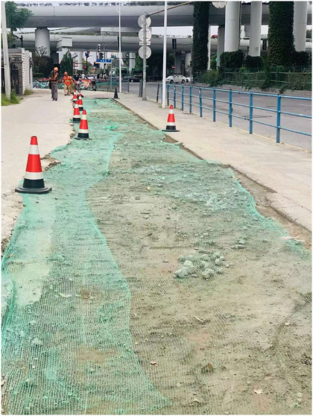 杂草去除人行道也正在恢复.png