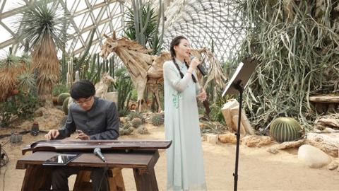 辰山植物园举行中秋国风游园会
