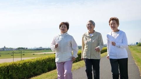 日本65岁及以上老人占总人口近30%