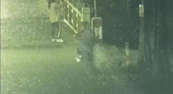 姑娘在桥上拍月亮被撞,警方抓获逃逸司机
